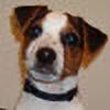 xworN's avatar