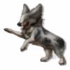 XxFinnickLoverxX's avatar