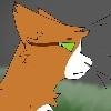XxGingaWolfxX's avatar