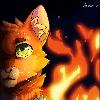 XxJinxkittyxX's avatar