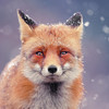 XxLucarioXSylveonxX's avatar
