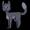 XxSnowtailxX's avatar