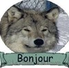XxsunboixX's avatar