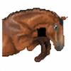 xxziggi's avatar