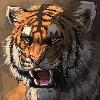 Y-GabyT's avatar