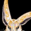YabbitKilla's avatar