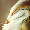 Yadolin's avatar