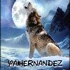 Yaihernandez's avatar