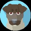yallcor's avatar