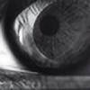 YANGLU512's avatar