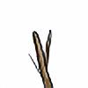 yayherrschtickplz's avatar