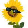 YellowRains's avatar