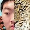 yifanxu0428's avatar