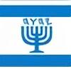 yireshalom's avatar