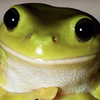 yoloswag32's avatar
