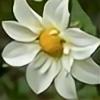 Yorzua's avatar