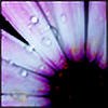Youjeen's avatar