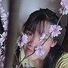 Yuki-Ha-na's avatar