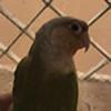Zaizan-desu's avatar