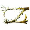 ZanOellO's avatar