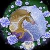 Zayliao1's avatar