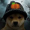 zeebeethedog's avatar