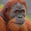ZEGH8578's avatar