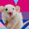 ZeLiXXX's avatar