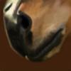 Zelsham's avatar