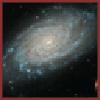 ZenMarquis's avatar