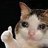 zhangc's avatar
