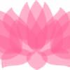 ziroque's avatar