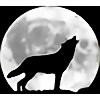 zooloo12345's avatar