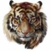 ZOOSTOCK's avatar
