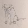 zornobobo's avatar
