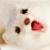 zumi226's avatar