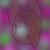 :icon000lolcat1: