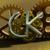:icon010ck010: