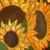 :icon01napoleonka: