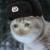 :icon052402: