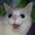 :icon12tinypelicans: