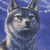 :icon17frostwolf: