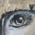 :icon1classicivory1: