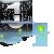 :icon2011plz6: