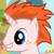 :icon206-ginge:
