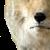 :icon2seriousplz: