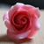 :icon3looyah: