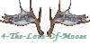 :icon4-the-love-of-moose: