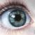 :icon4thina: