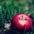 :icon7dd5d1: